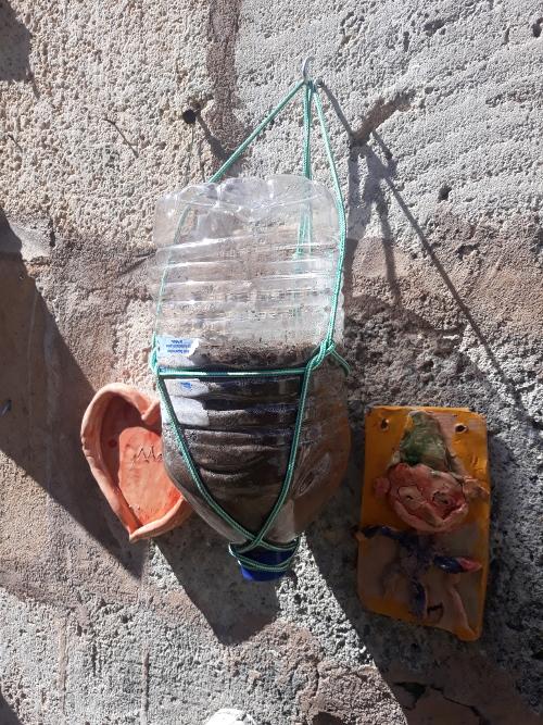 Upcycling. Macetas colgantes a partir de garrafas deplástico.